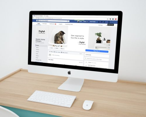 My business has a Facebook page, do I really need a website?